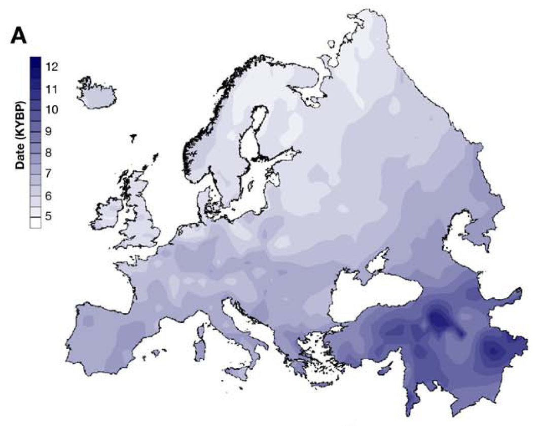 Balaresque et al 2010 - Figure 1A on Chronology of Spread of Agriculture through Europe